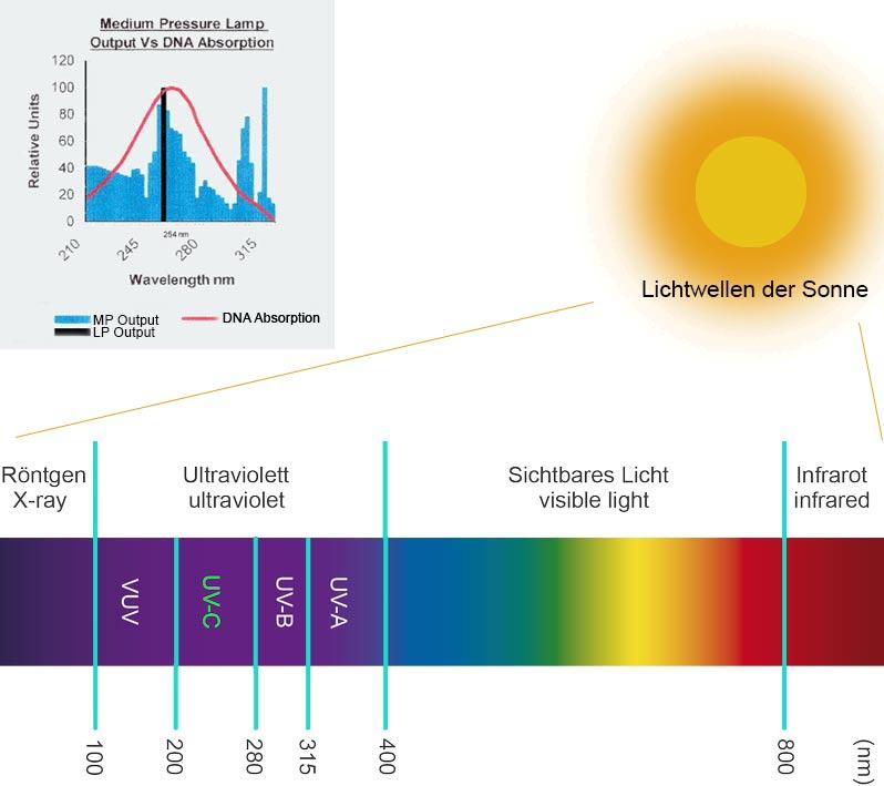 Lichtspektrum und UV-Licht